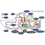 Webasto DBW 2020/230/300 Hydronic Boat Heater with Surewire EZ Install Board System Layout